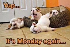 Monday-Again