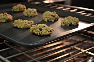 disappearing-oatmeal-raisin-bites-oven
