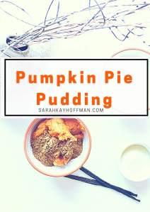 pumpkin-pie-pudding-sarahkayhoffman-com_