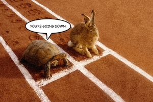 tortoisegoingdown